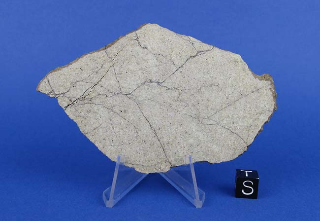 lunar gabbro meteorite