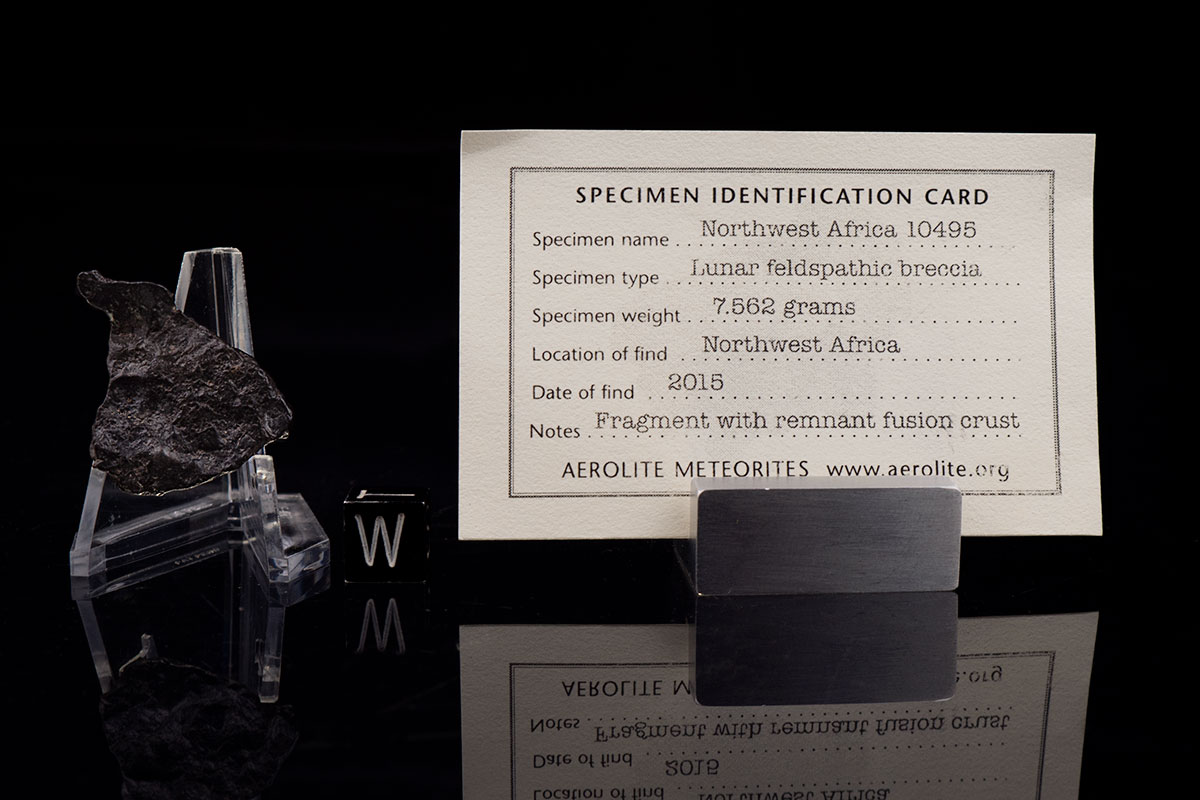 NWA 10495 7.562 Grams with specimen card