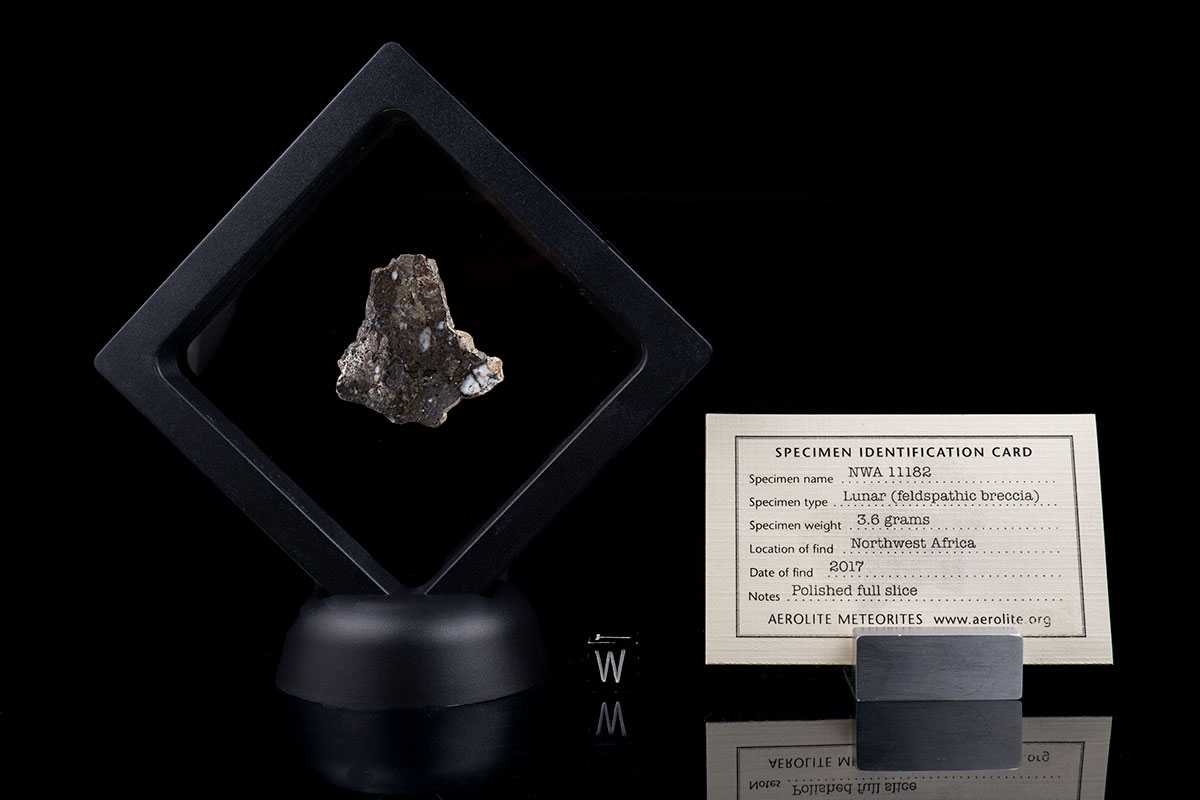 NWA 11182 3.6 Grams with specimen ID card