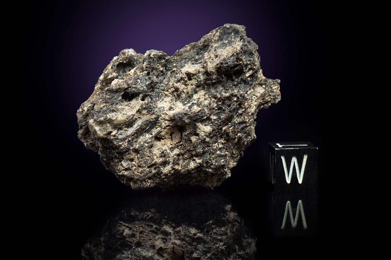 Darwin Glass 20.5 Grams