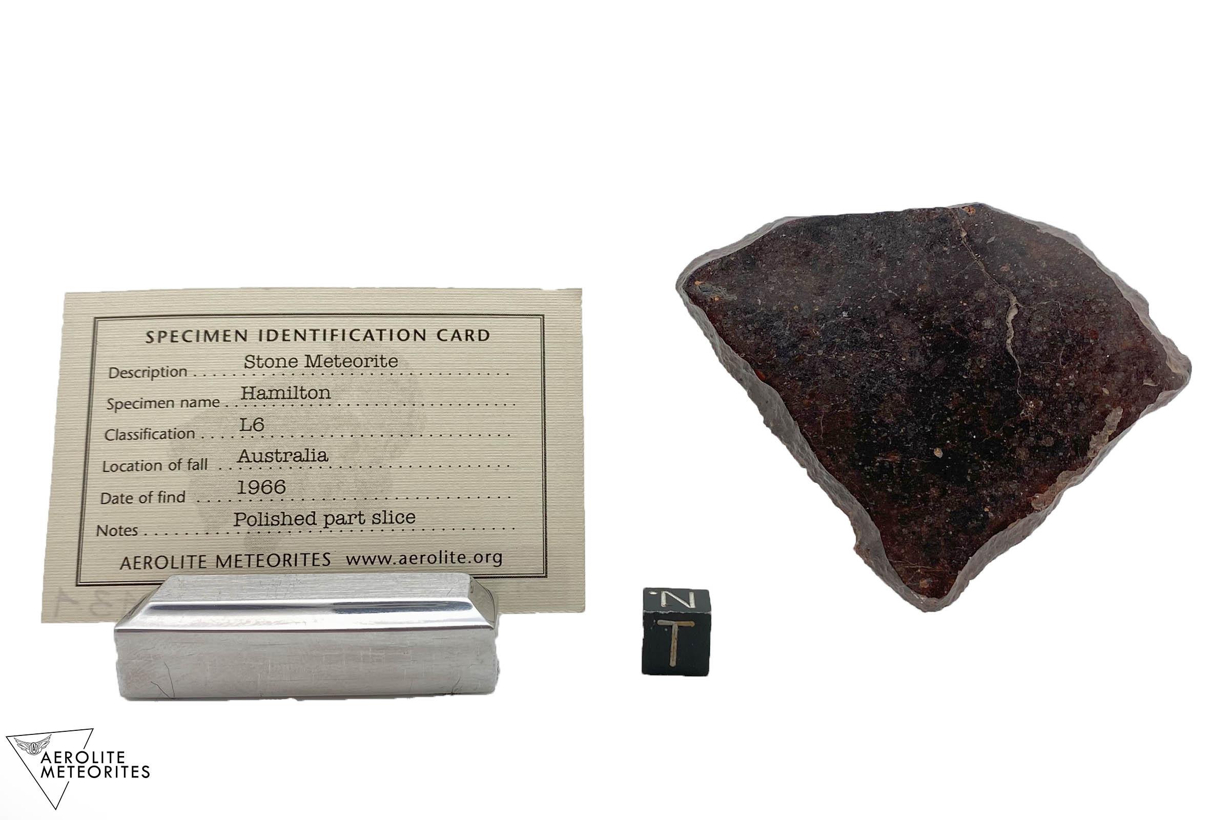 Hamilton 43.4 grams-i