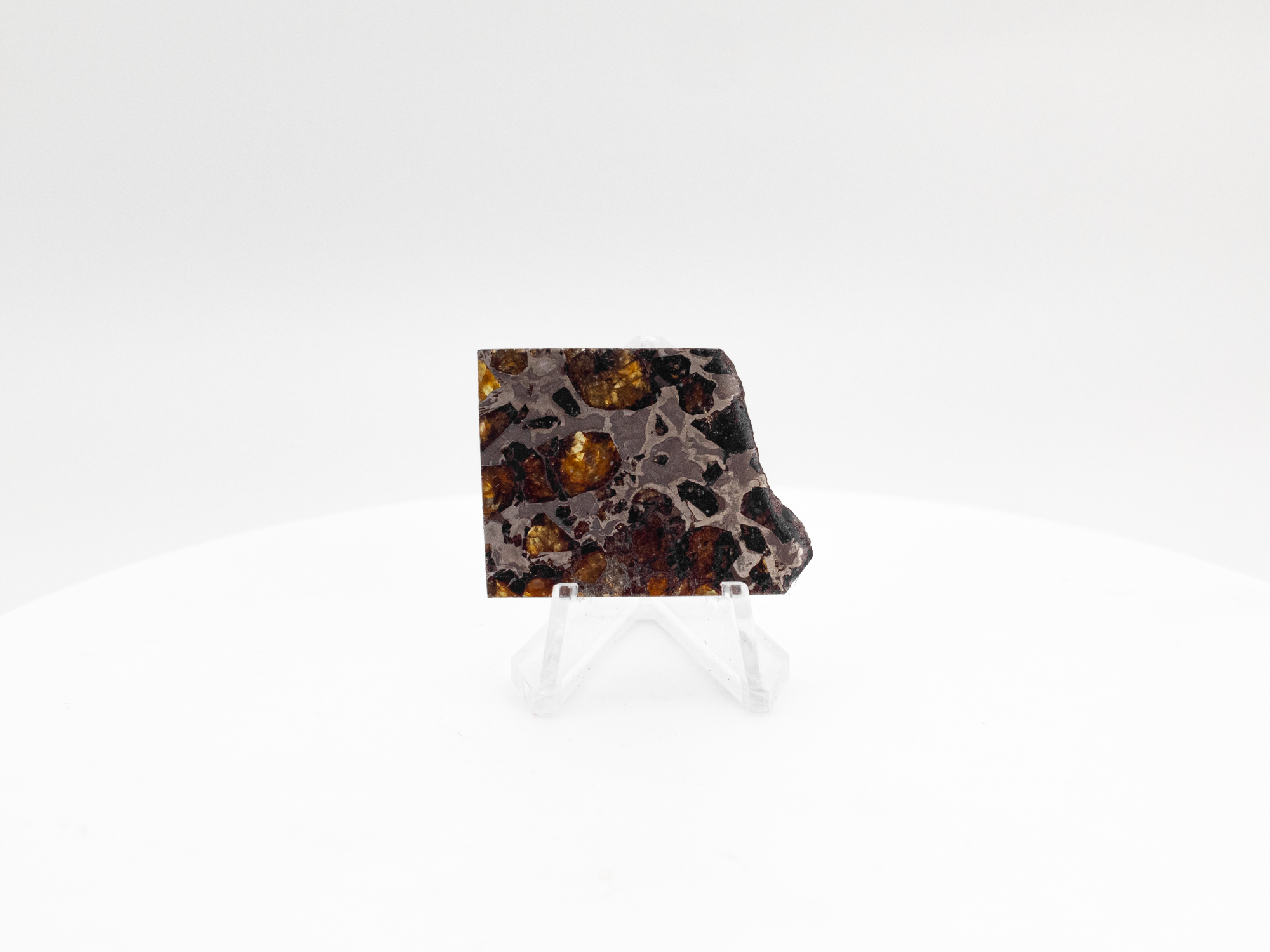 brahin pallasite meteorite 12 grams