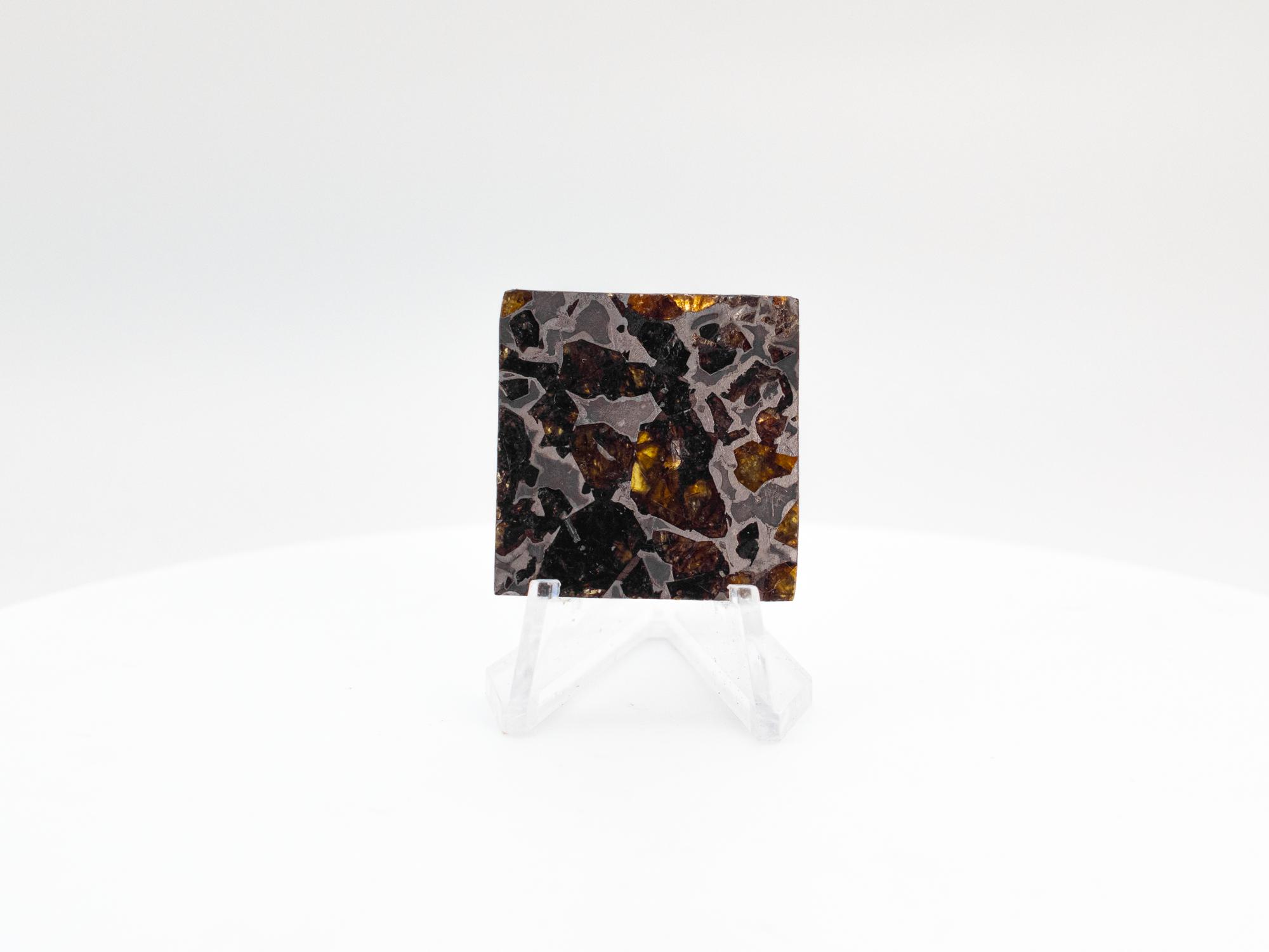 brahin pallasite meteorite