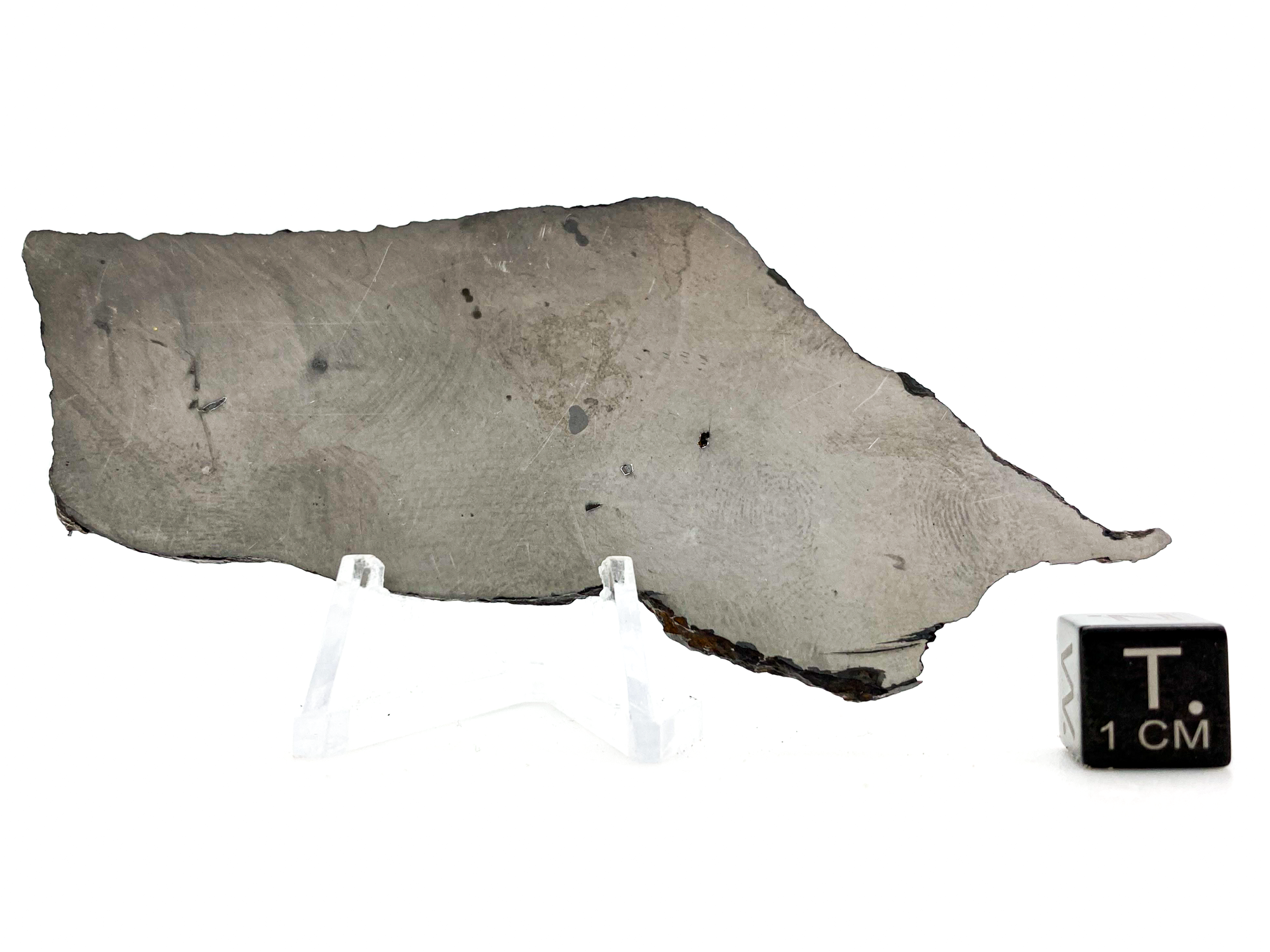 chinga iron meteorite 55 grams