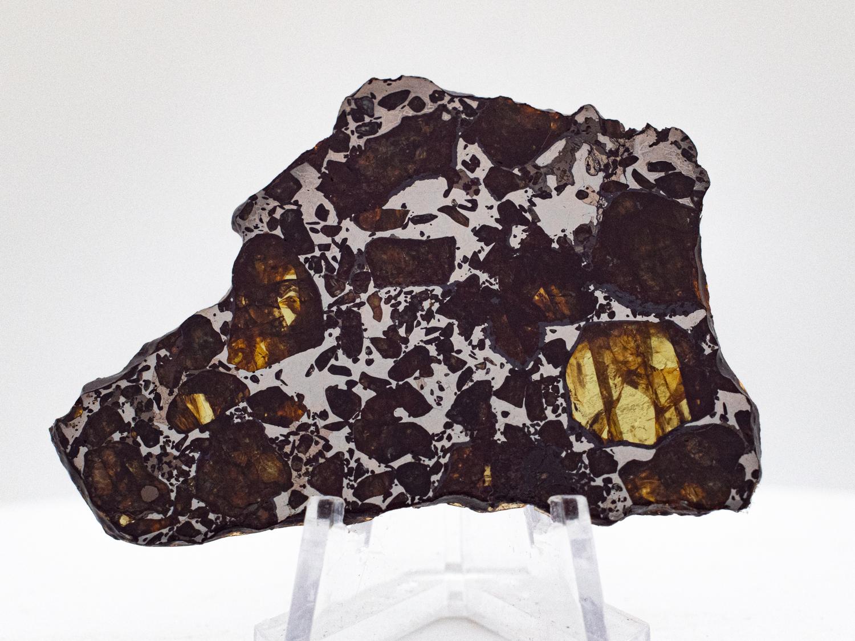 pallasite meteorite 17g