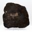 eucrite meteorite