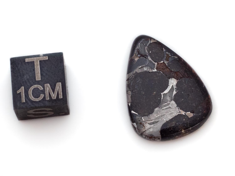 pallasite meteorite cab 2g