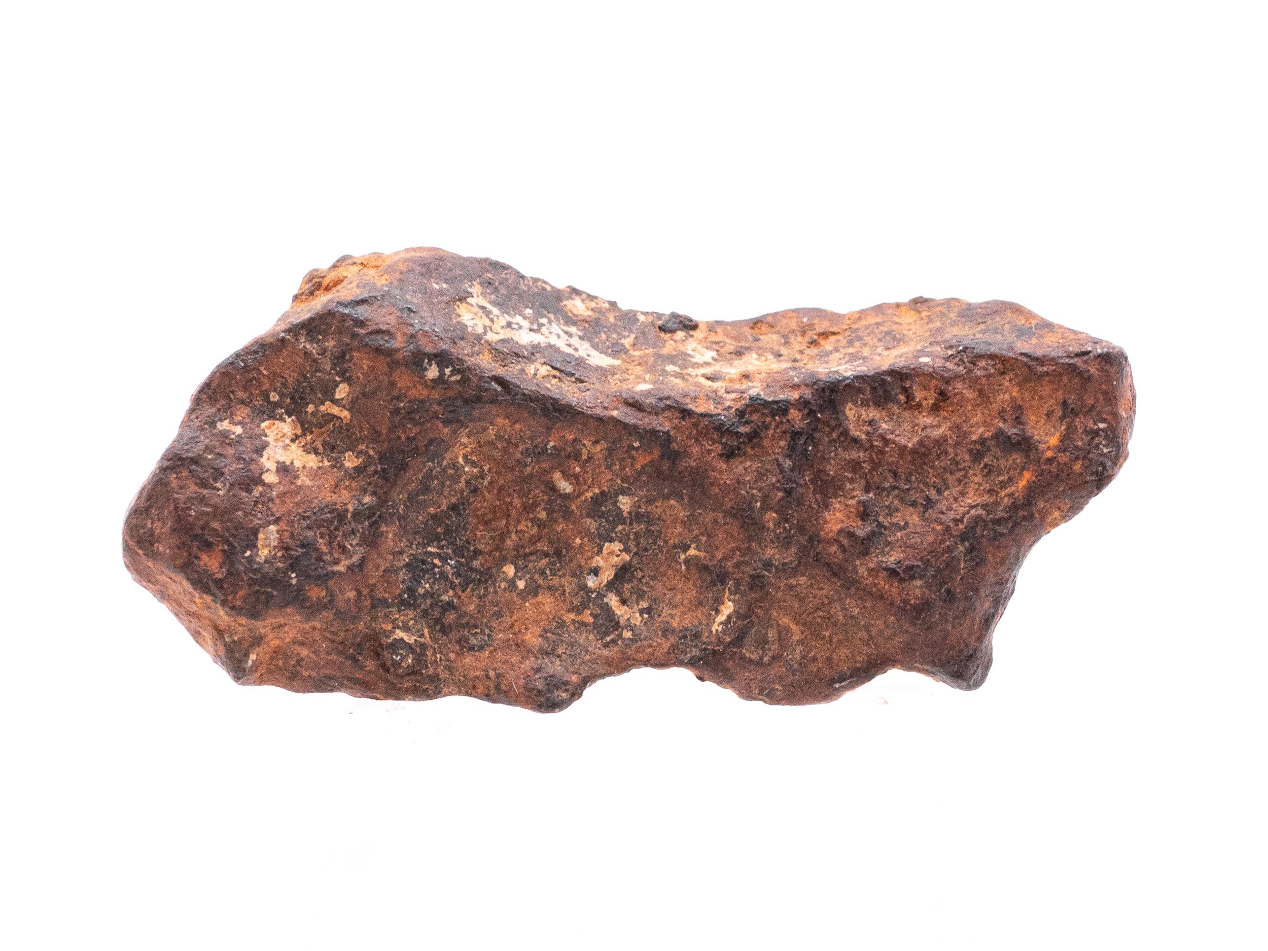 agoudal iron meteorite 15