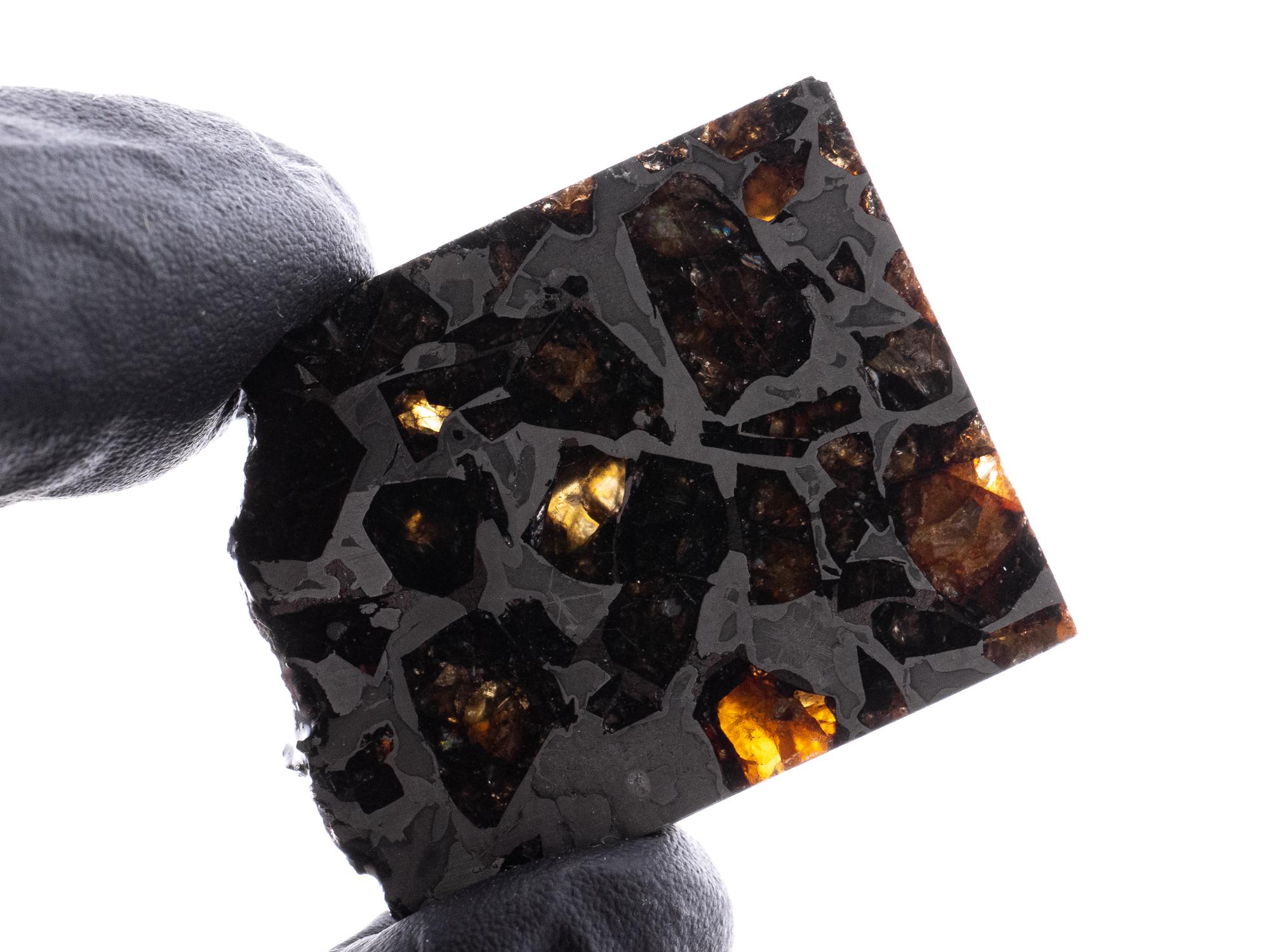 brahin pallasite meteorite 15