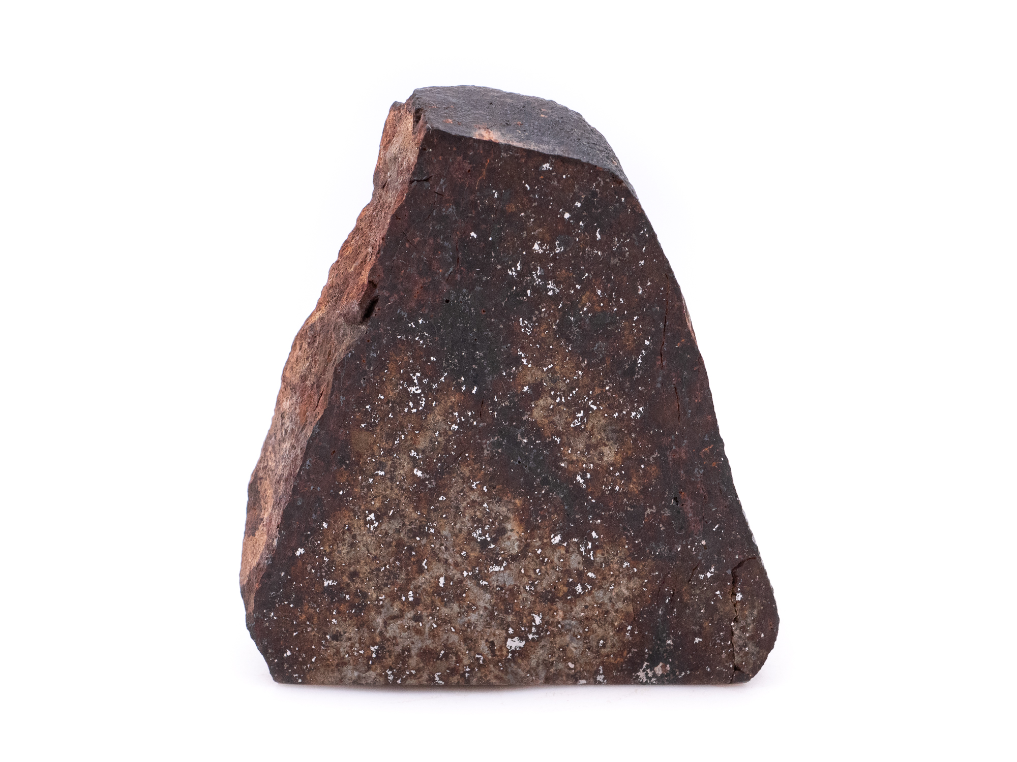 northwest africa meteorite 93.6g