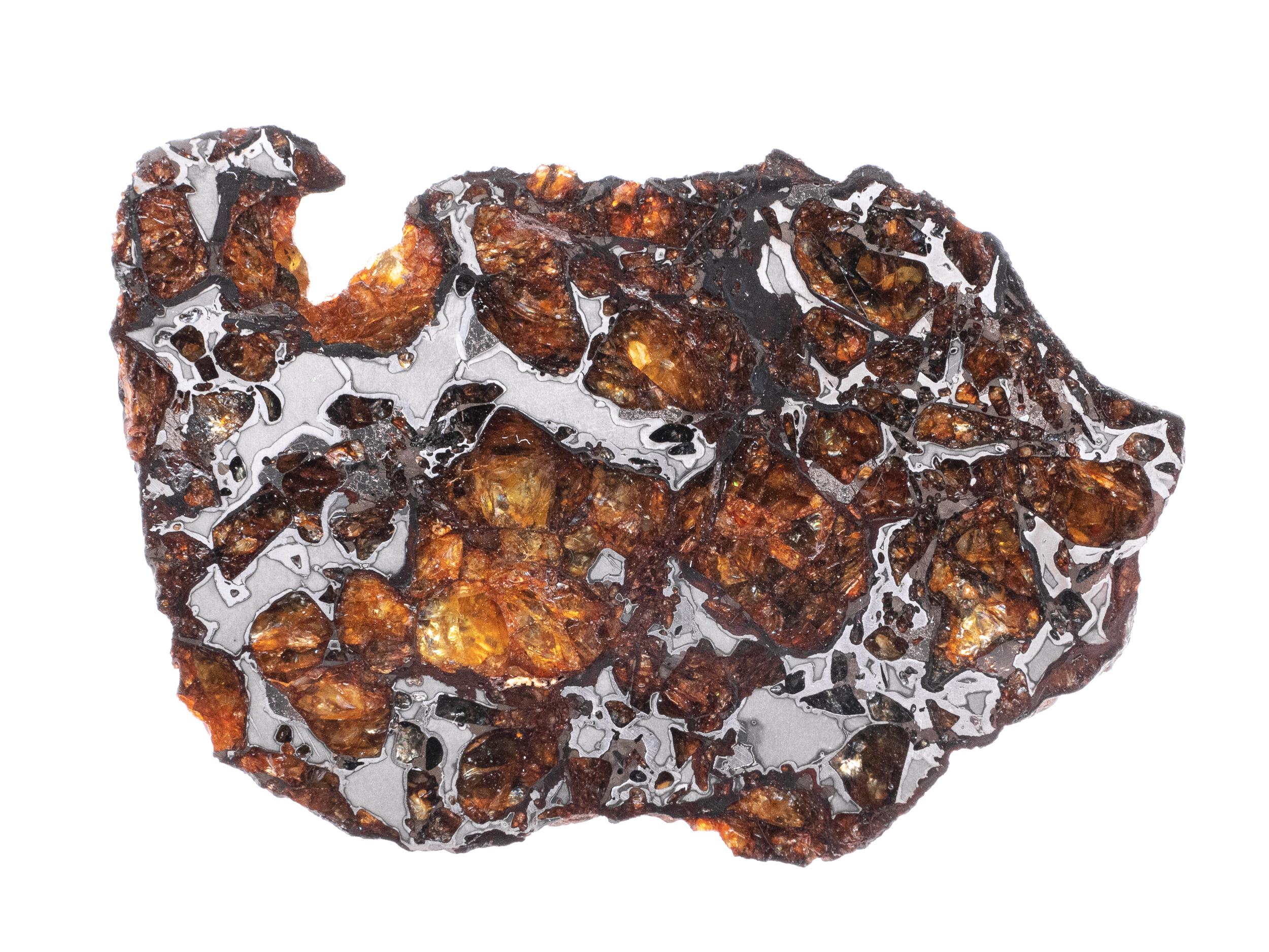 pallasite meteorite 28.8g