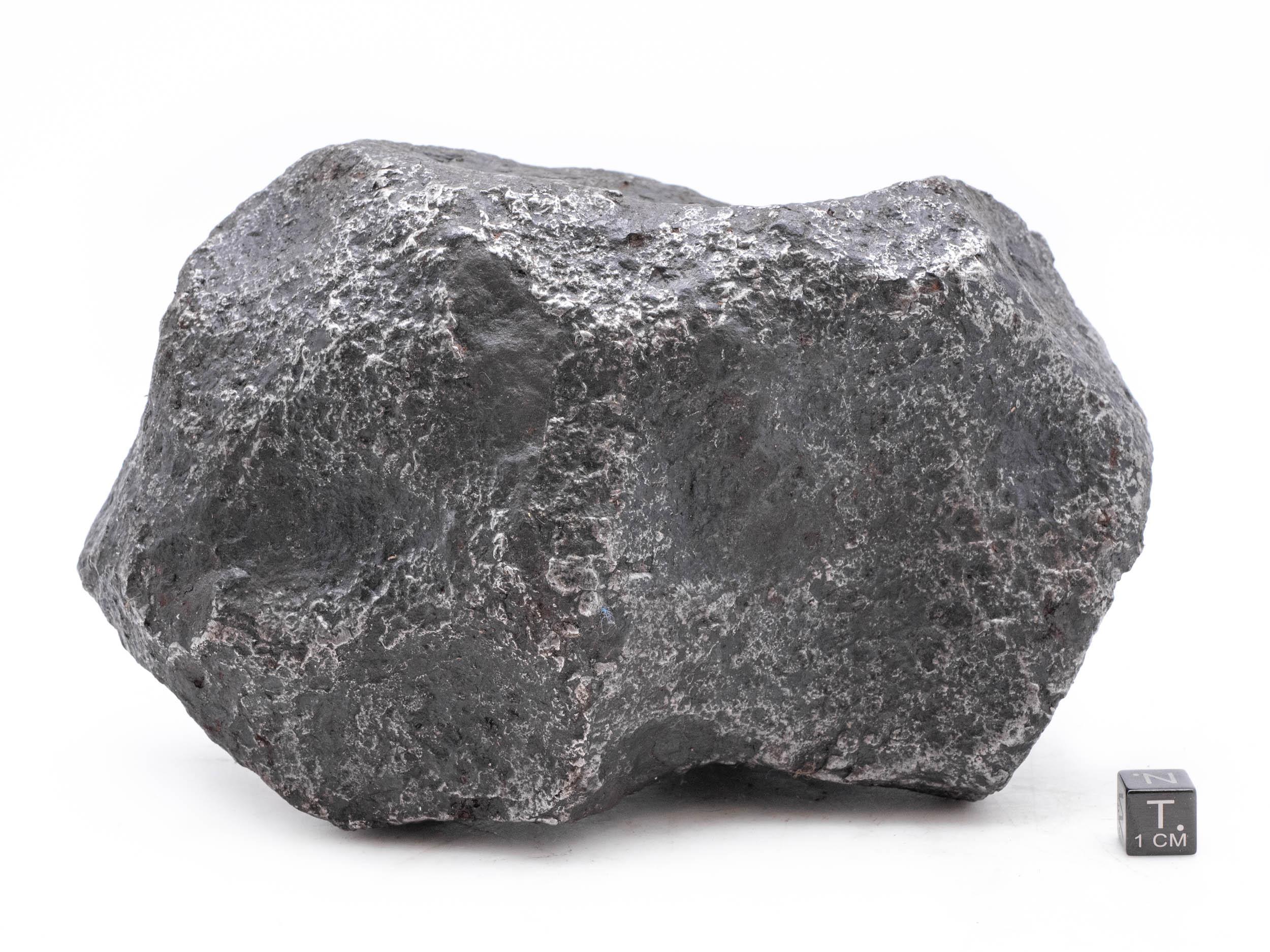campo del cielo iron 4 kg