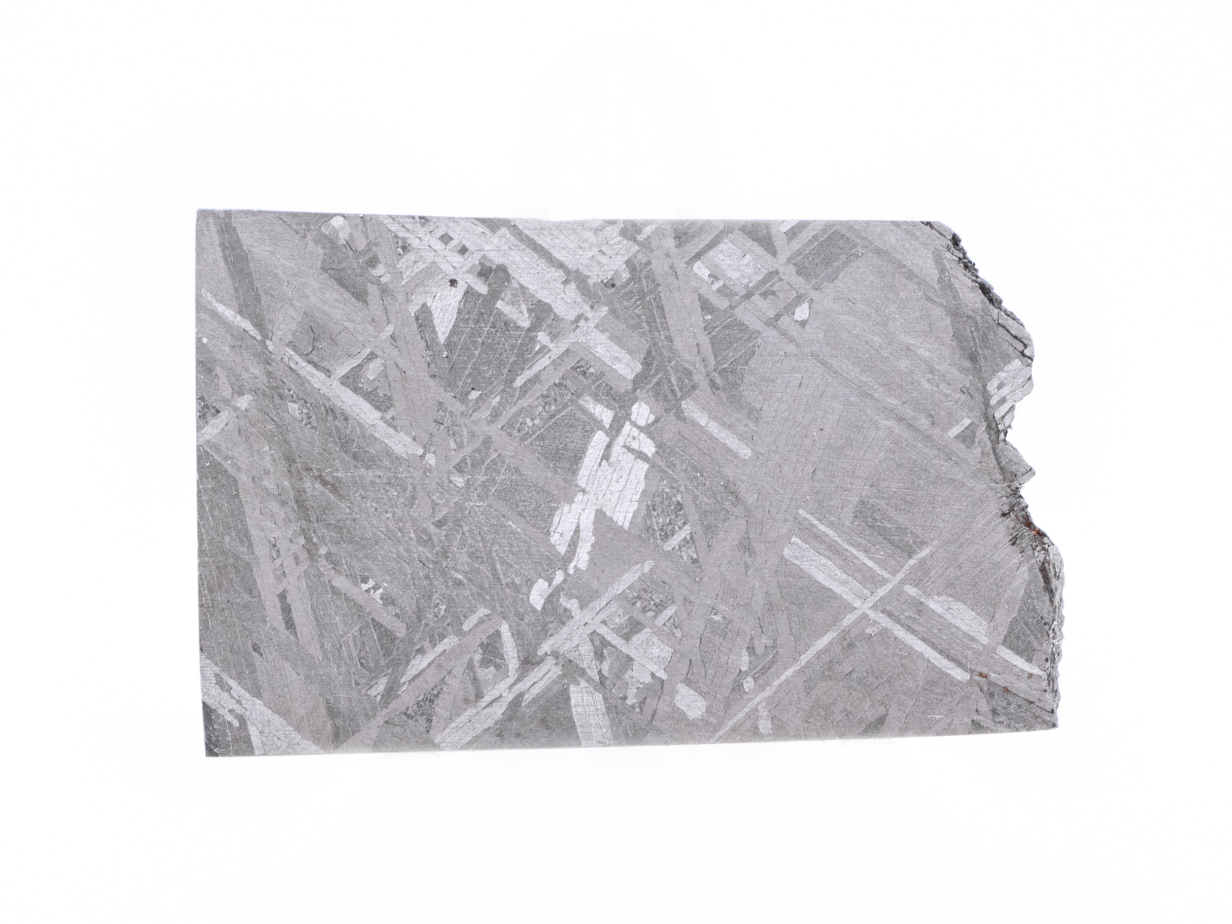 muonionalusta iron meteorite 16g